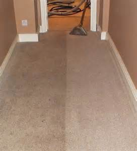 carpet cleaning lakewood ca